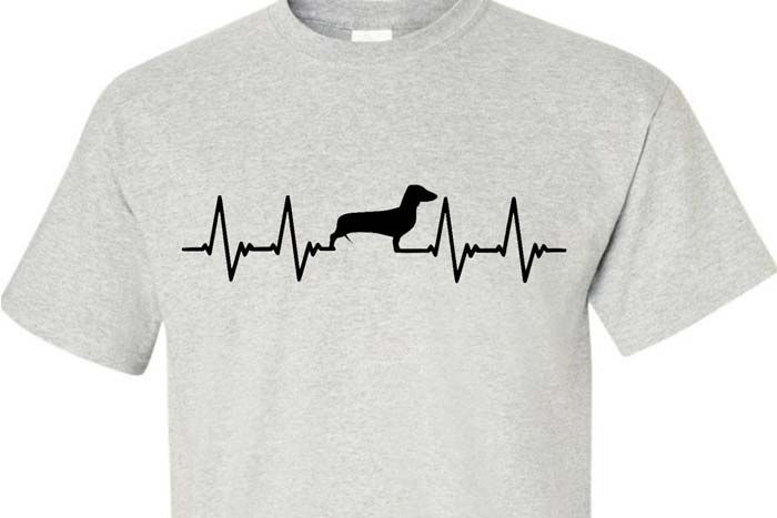 Differentiation in heartbeat shirt for dogs